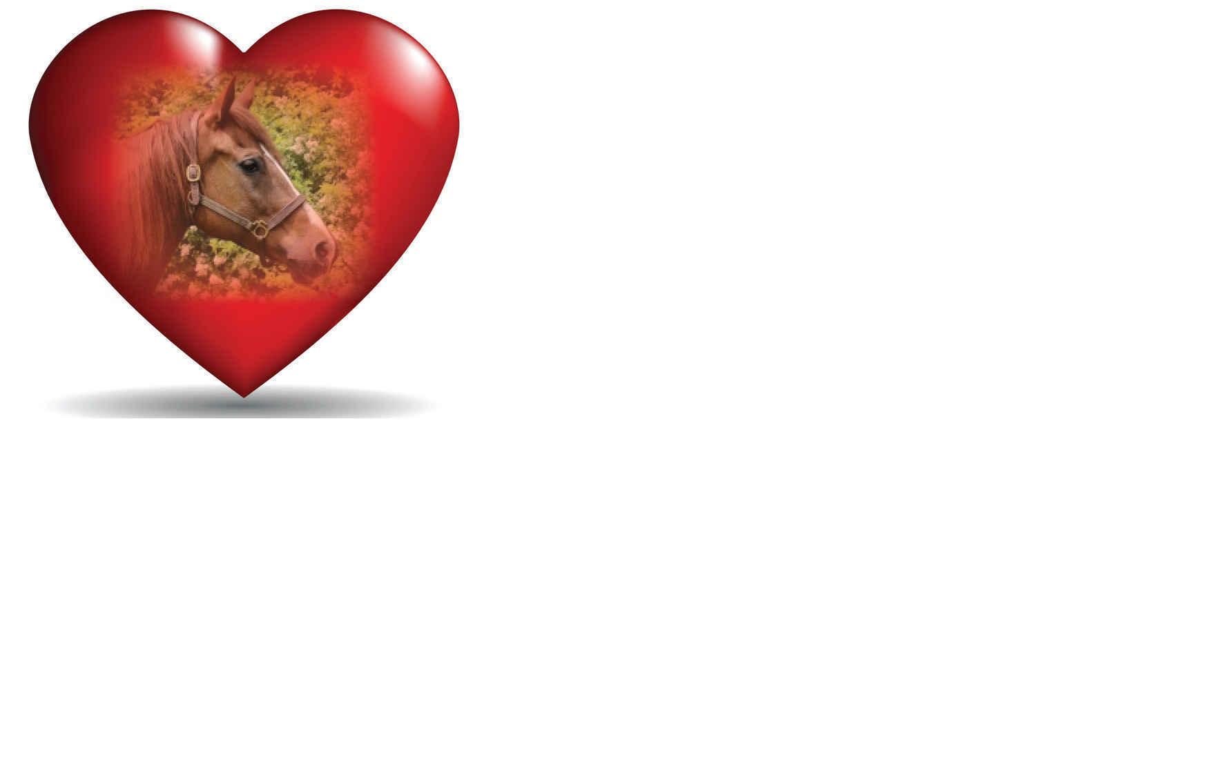 Send Love Fundraiser image