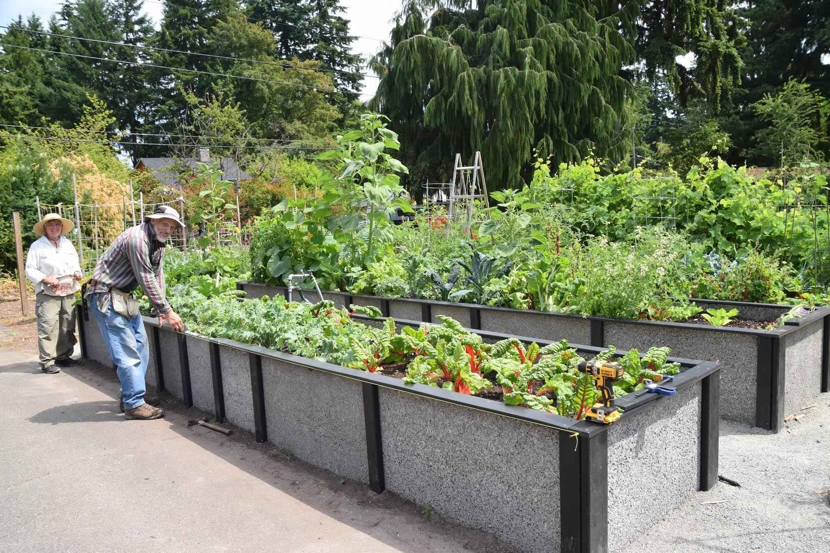 Help ensure the future of community gardening in the Seattle area. image