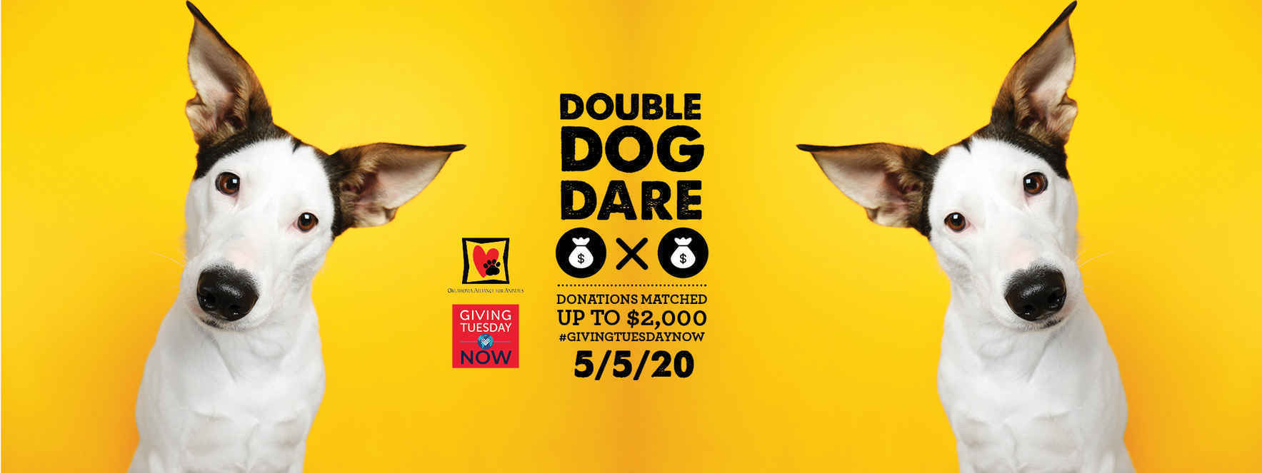Double Your Donation Today image