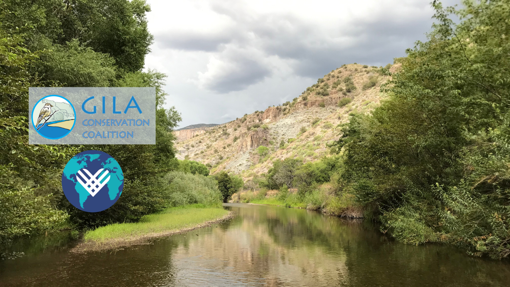 Together, we can protect the Gila River image