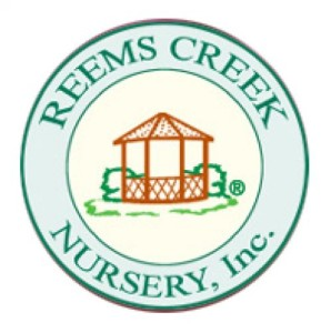 Reems Creek Nursery