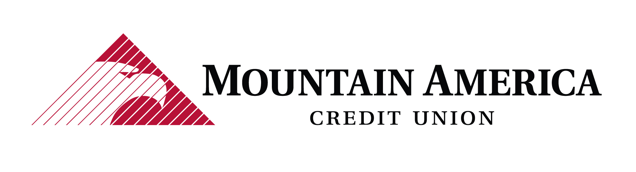 National PTA thanks Mountain America Credit Union for their generous match for this #GivingTuesday!