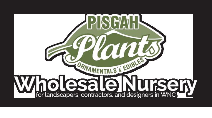 Pisgah Plants Wholesale Nursery