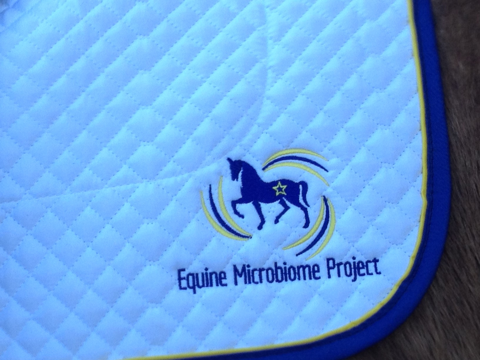EMP saddle pad