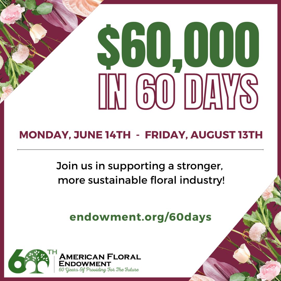 60,000 in 60 Days Logo