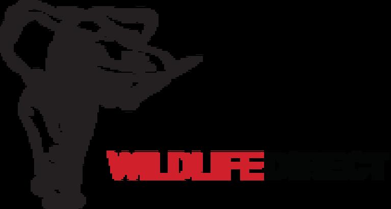 WildlifeDirect INC