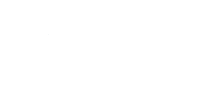 TRI CITY VOLUNTEERS INC