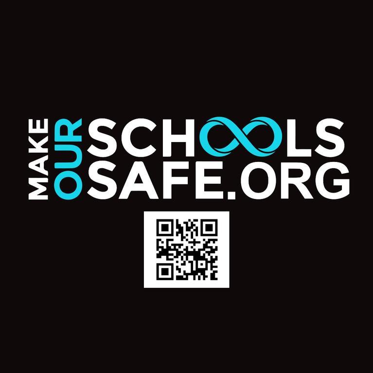 MAKE OUR SCHOOLS SAFE INC