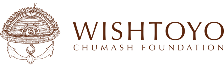 WISHTOYO FOUNDATION logo