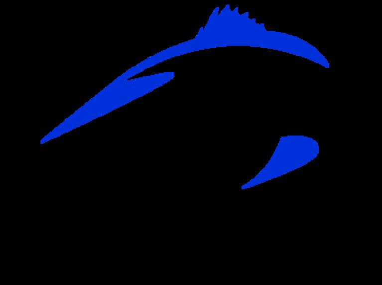 Marine Education Initiative