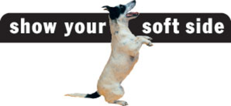 Show Your Soft Side logo