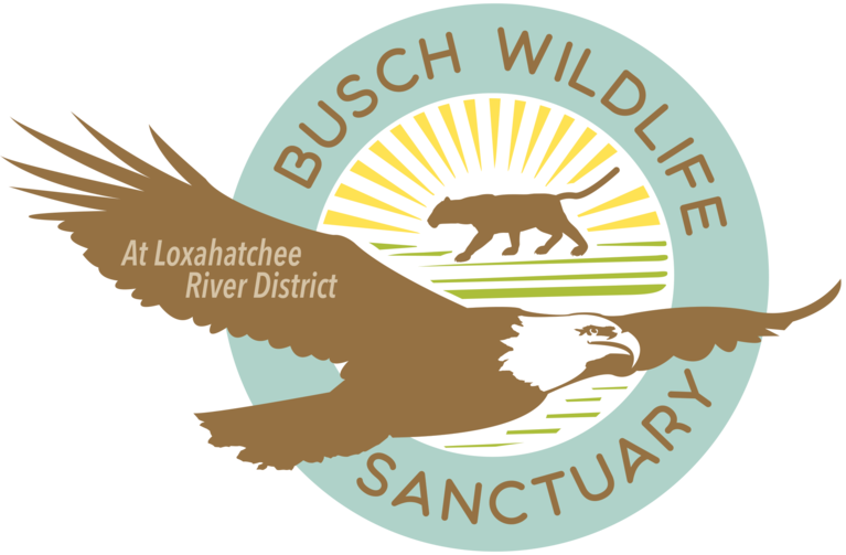 The Busch Wildlife Sanctuary Inc
