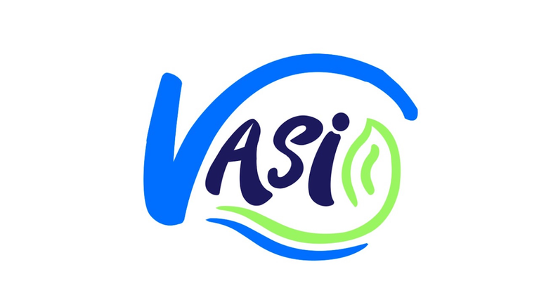 VASI (Amazonian Vision for An Integrated Sustainability)