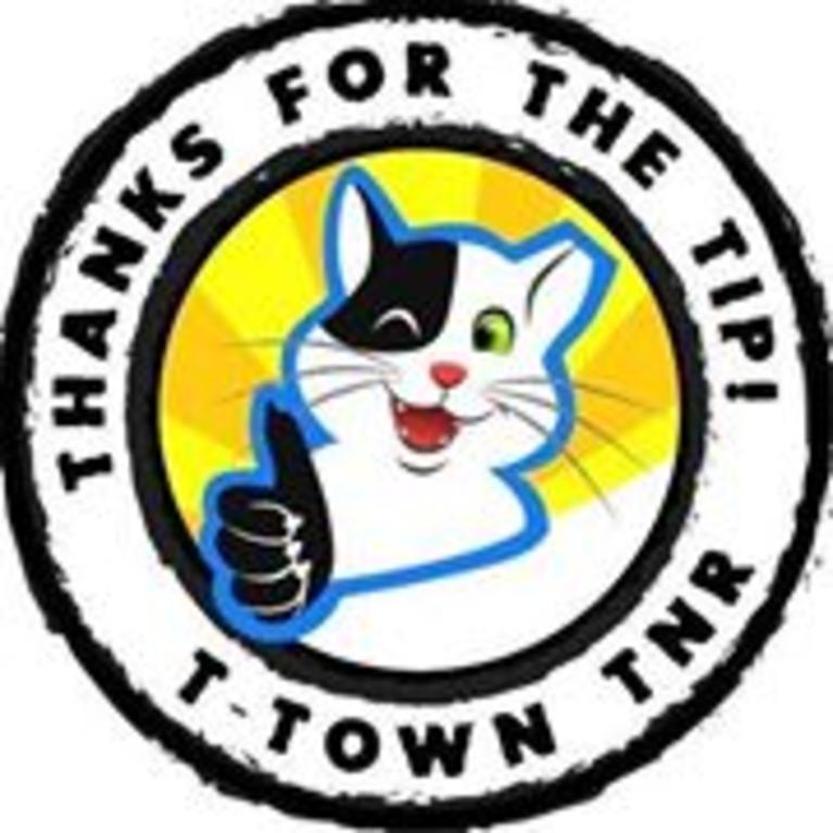 T-Town TNR, Inc