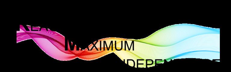 REACHING MAXIMUM INDEPENDENCE INC logo