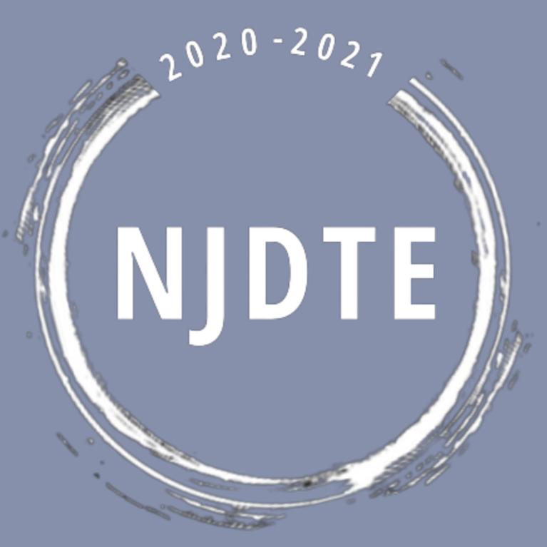 New Jersey Dance Theatre Ensemble Inc logo