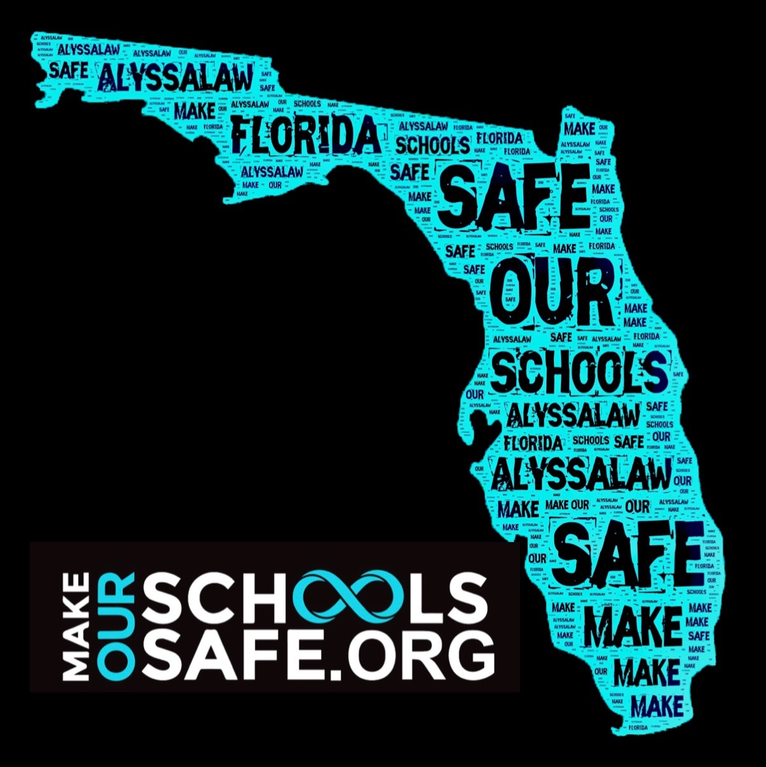 Make Our Schools Safe