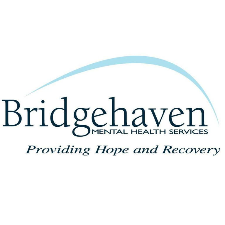Bridgehaven Inc logo