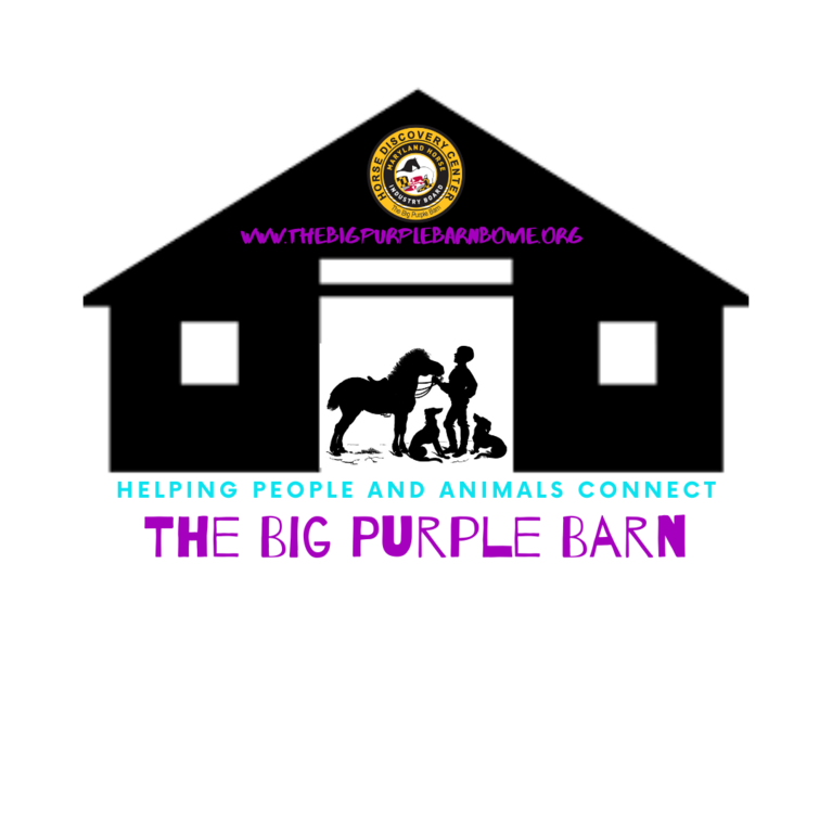 BIG PURPLE BARN INC logo