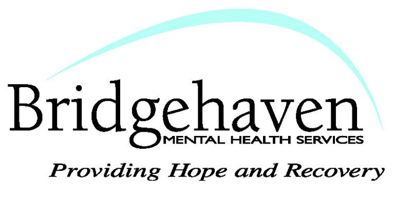 Bridgehaven Inc