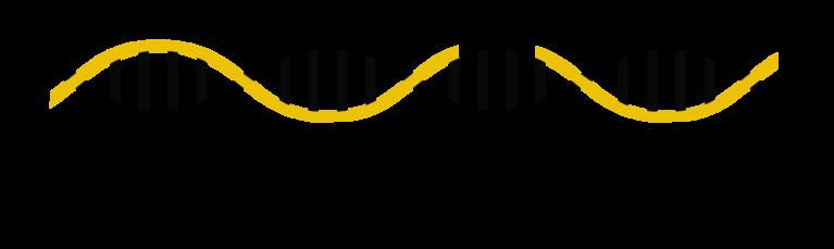 The DESSH Foundation logo