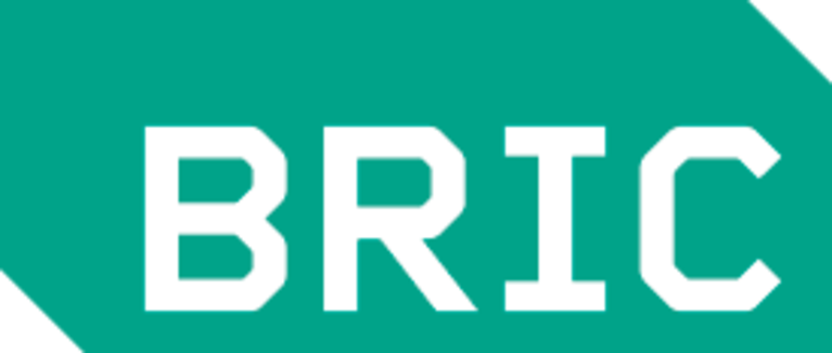 BRIC Arts | Media | Bklyn logo