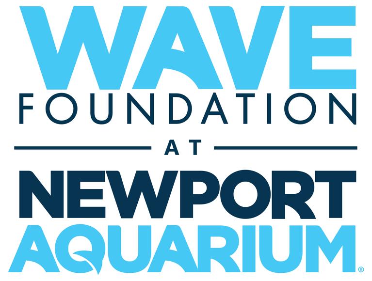 Wave Foundation Inc logo