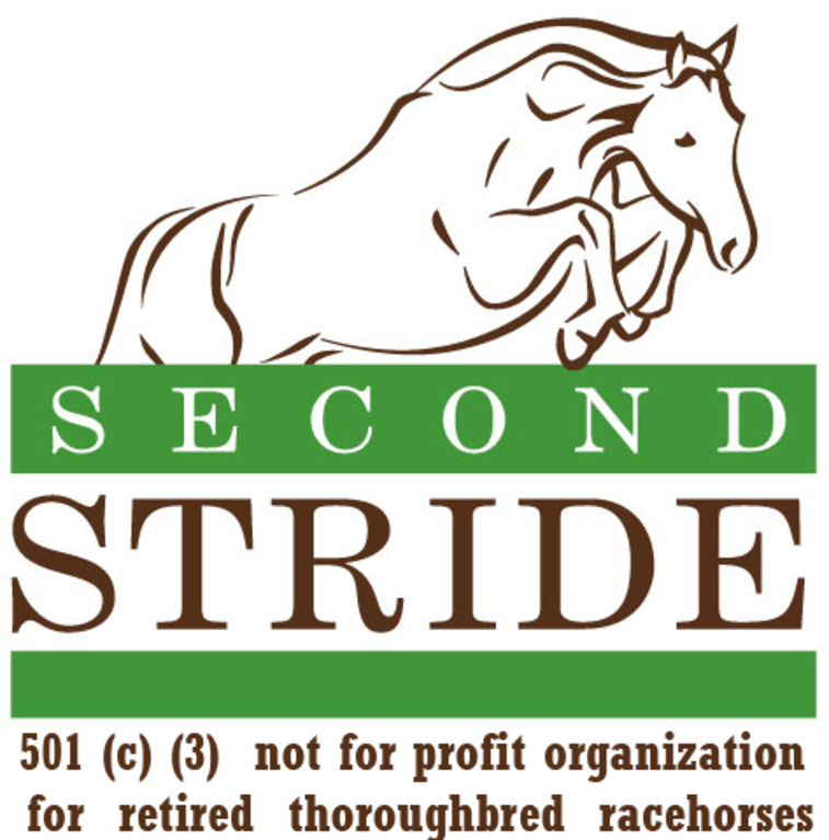 Second Stride, Inc. logo