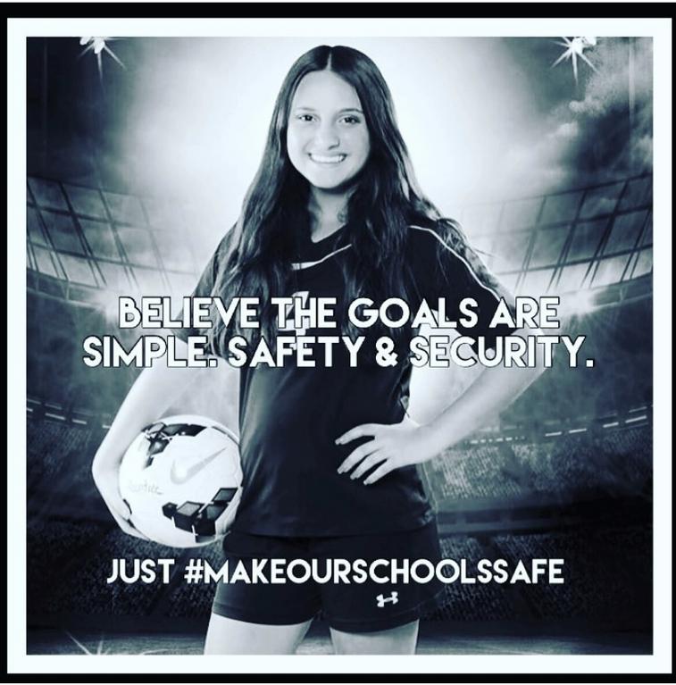 Make Our Schools Safe