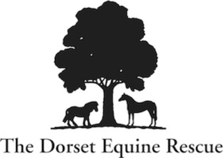 DORSET EQUINE RESCUE INC logo