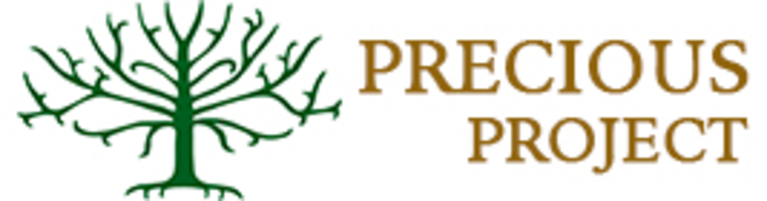 PRECIOUS PROJECT INC logo