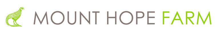 Mount Hope Trust in Bristol
