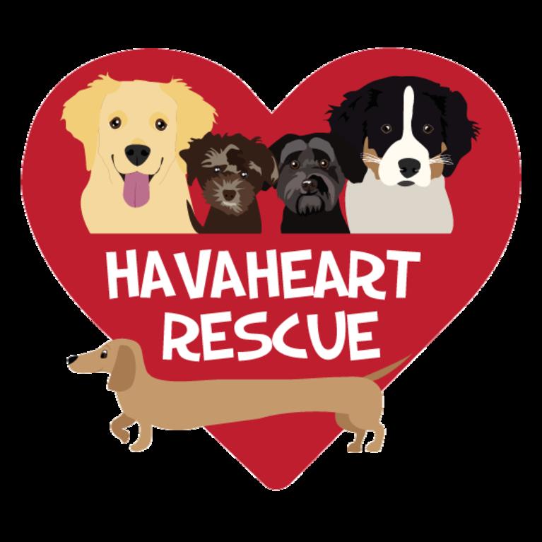 HavaHeart Rescue