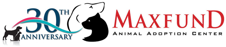 Maxfund, Inc.