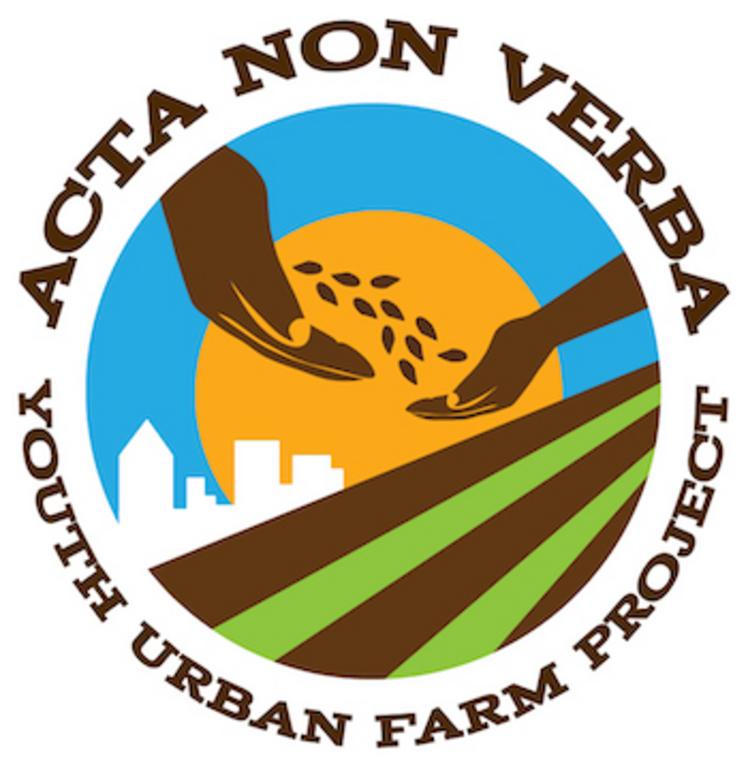 ACTA NON VERBA YOUTH URBAN FARM PROJECT