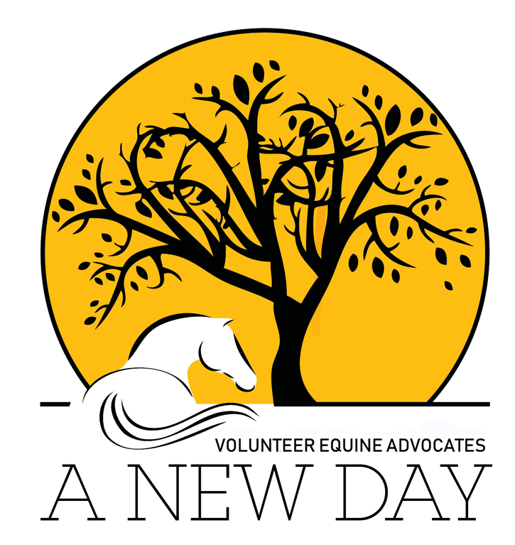 Volunteer Equine Advocates logo